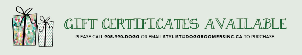 GIFT CERTIFICATE BANNER (1)